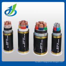 Voltages jusqu'à 35kv PVC / XLPE Câble d'alimentation