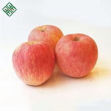 fruta china manzanas frescas manzana fresca fruta de manzana china