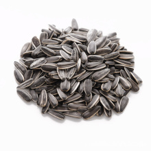 wholesale black sun flower seeds in shell