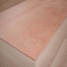 American Standard CARB Packaging Plywood 12 Mm