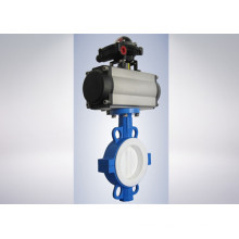 Strong Base PTFE Lined Butterfly Valve