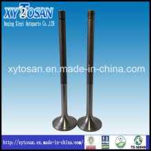 Marine Engine Fitting Parts, Intake and Exhaust Valve, Valve Seat, Valve Guide for Aksaka