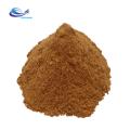 Extrait de champignon 100% naturel Agaricus blazei Murrill