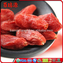 Goji berry fruit fresh goji berry for sale goji berry fertilizer