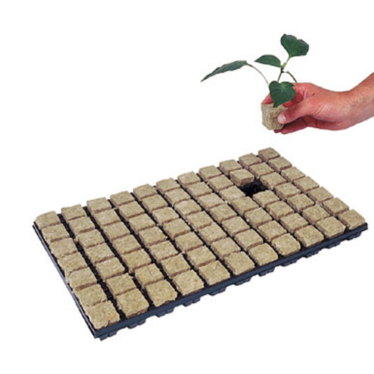 Skyplant Indoor Rockwool Hydroponic Indoor With Hole