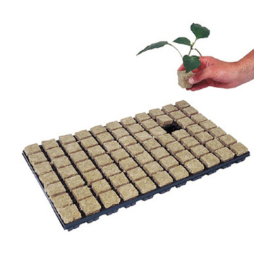 Skyplant Indoor Hydroponic Rockwool Cubes With Hole