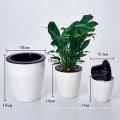 Selbstbewässerungs-fantastischer Schreibtisch-Tabellen-Plastikorchideen-Kraut-Behälter-Blumentopf