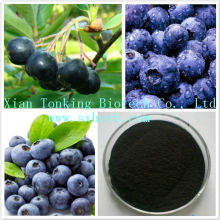 Acai extract powder