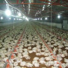 Automatic Chiken Farm Machinery for Broiler