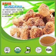 Factory Supply High Quality agaricus blazei extract