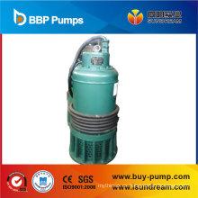 Bomba sumergible con interruptor de flotador, bomba de agua, bomba de jardín