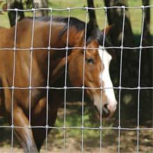 valla de campo de cerca de granja de ciervos de alambre tejido de nudo fijo galvanizado en caliente