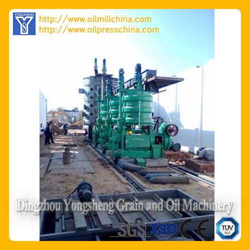 Cottonseed Oil Mill Machine