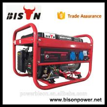 Bison China Zhejiang 3KW 6.5HP Портативный генератор бензинового двигателя Бесшумный генератор для 3000