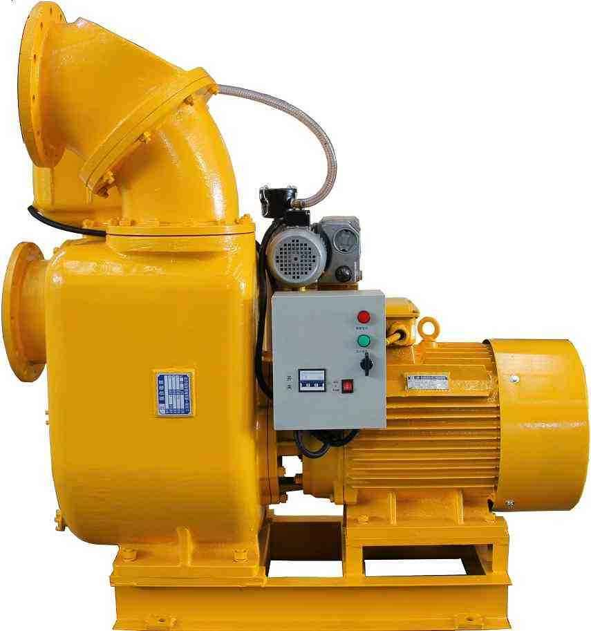Powerful self-priming pump with vacuum assist system 1