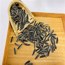 Hot Sell Material Kuaci Sunflower Seeds Raw