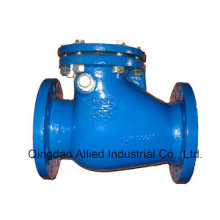 Cast Iron Swing Check Valves DIN3202 F6 Type a