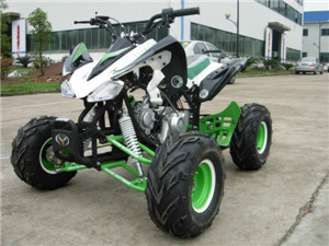 Yamaha Raptor ATV