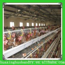 Bule de água automática popular e de boa qualidade para galinhas
