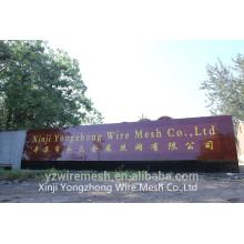 Fabricante de fio galvanizado na China