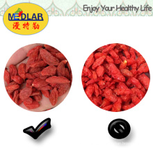 Snacks Medlar Goji Berry Gojiberry
