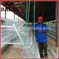 Volle automatische Geflügel-Ausrüstung für Schicht-Hühnerzucht