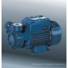 Pompe à vortex (DQm60-1)