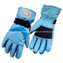 Дамы Wnter перчатки, лыжные перчатки