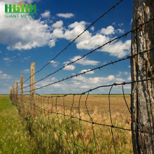 Iron Galvanized Reserve Zone Protection Barbed Wire