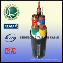 Câble de basse tension d'état 0.6 / 1kv Câble d'alimentation