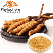 Factory Wholesale Price 10%~40% Polysaccharides Cordyceps Sinensis Extract