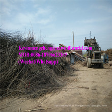 Machine de broyeur de branche de prix de broyeur de souche de broyeur en bois de moteur diesel fabriqué en Chine