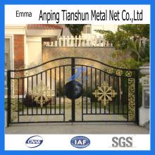 Puerta de hierro forjado residencial de venta caliente (TS-E133)