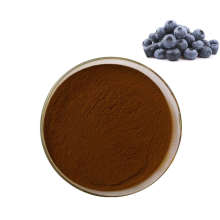 Hot selling 100% natural antioxidant blueberry extract powder bilberry extract