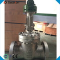 ASTM Stainless Steel CF3M Gear Operated Gate Valve