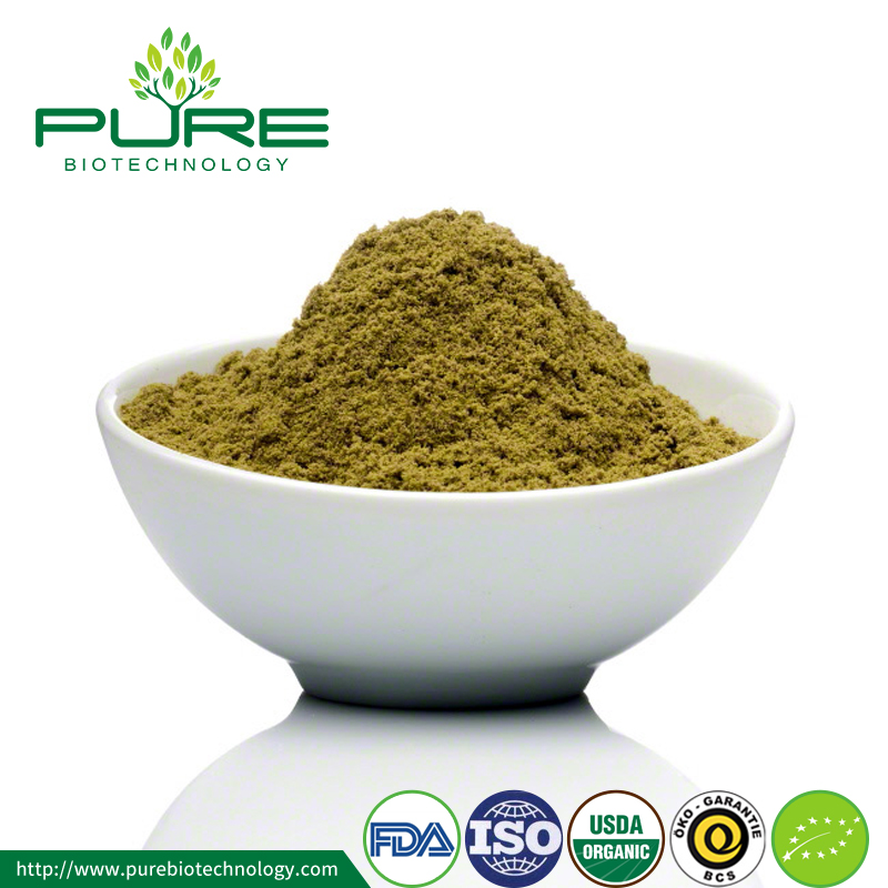 Superfood Certified Organic Green Hemp Protein
