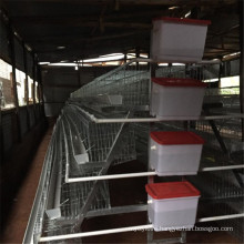 Galvanized 3 Layer 24 or 30 Nest Chicken Cage From China