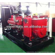 Wassergekühlter Erdgasgenerator