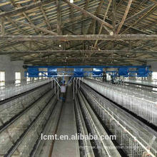 Automatisierte Ausrüstung für dreistufige terrassenförmige Hühnerkäfige