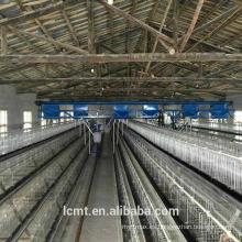 Equipo automatizado para jaulas de gallinas de huevo adosadas de tres niveles