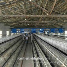 Équipement automatisé pour les cages de poulet à trois étages en forme d'oeuf