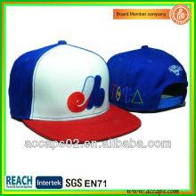 Kundenspezifische Hip Hop flache Bill Caps SN-2273