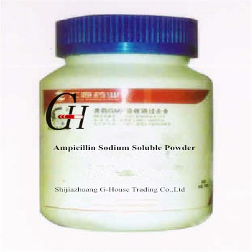 Ampicillin Sodium Salt Solubility
