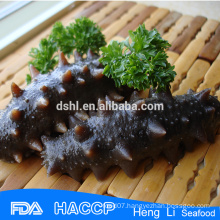 Delicious seafood Top Quality Sell Sea Cucumber
