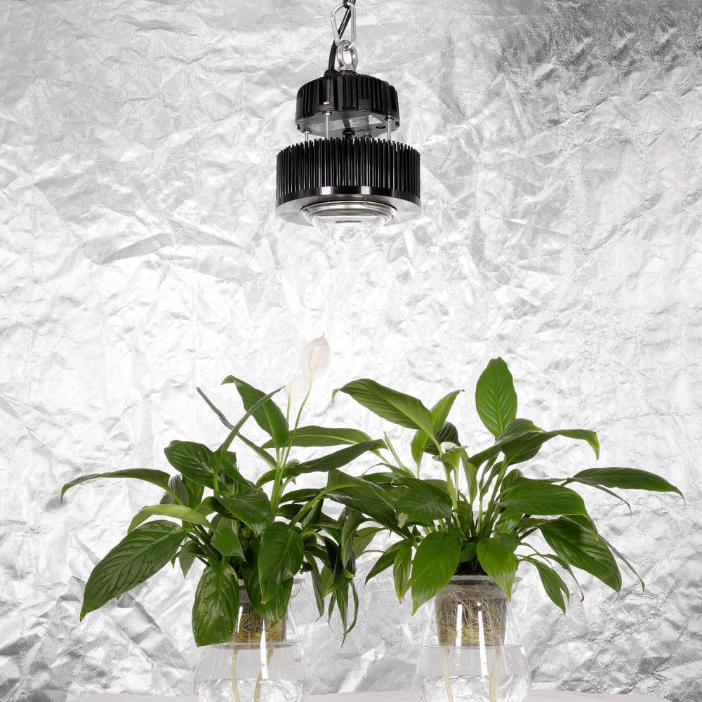 Meanwell Grow Light