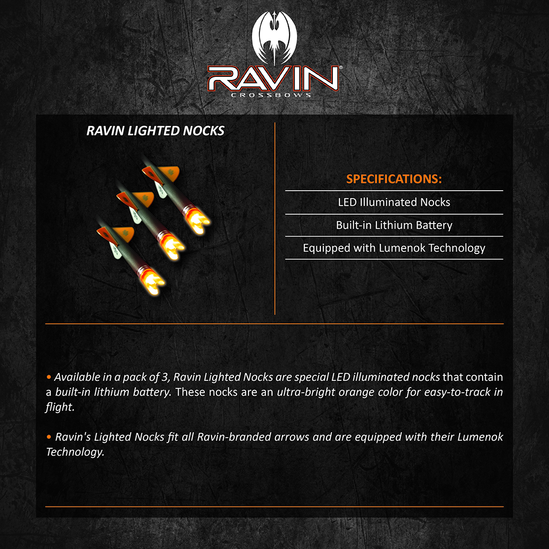 Ravin_Lighted_Nocks_Product_Description