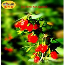 Ningxia Bio Super Fruit - Baie de Goji (Wolfberry) (vente chaude 2016), 280PCS / 50g
