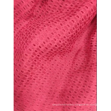 100% polyester hole knitted Jacquard fabric