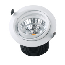 Downlight au plafond blanc chaud de 125 mm de diamètre