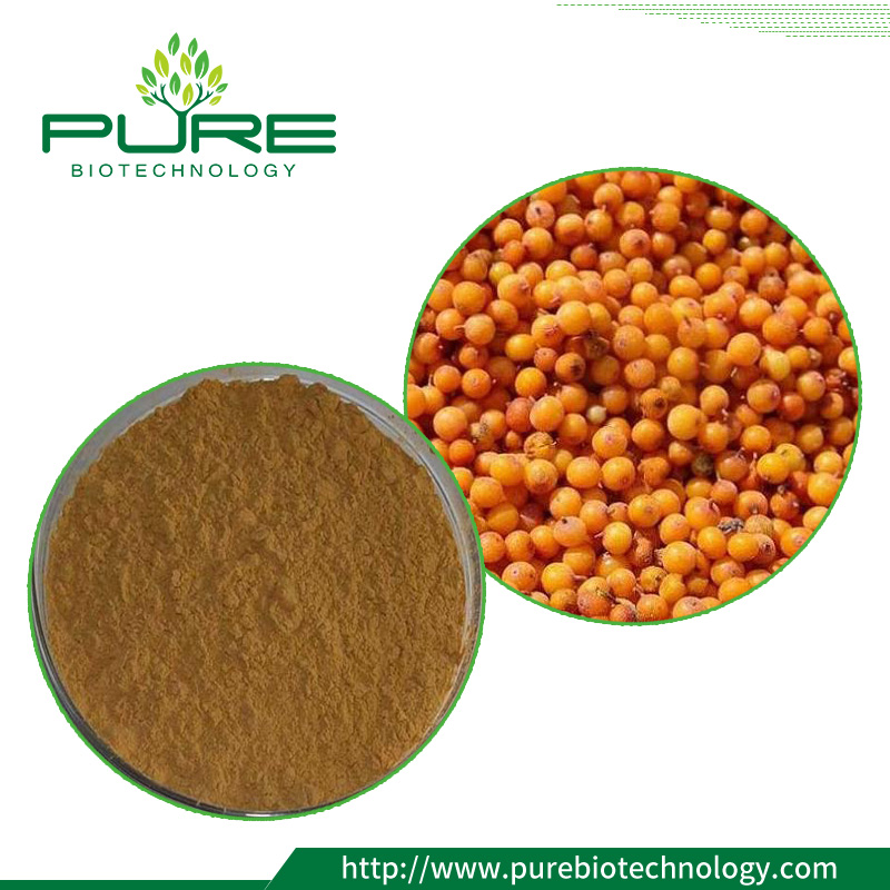 Sea buckthorn leaf Extract